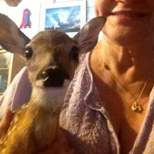 Lucy, a little 3.75 pound doe smiles for the camera.